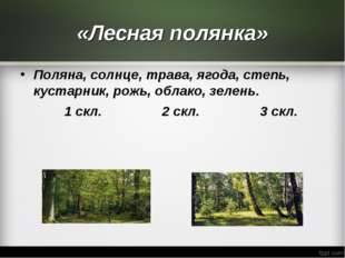 «Лесная полянка» Поляна, солнце, трава, ягода, степь, кустарник, рожь, облако