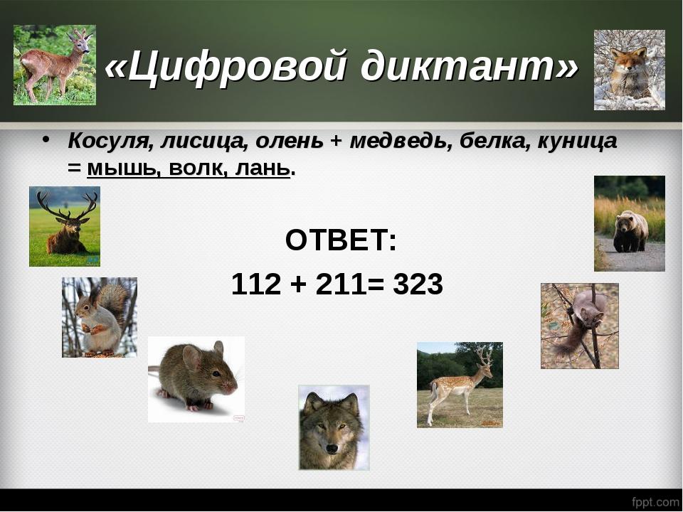 «Цифровой диктант» Косуля, лисица, олень +медведь, белка, куница =мышь, вол...