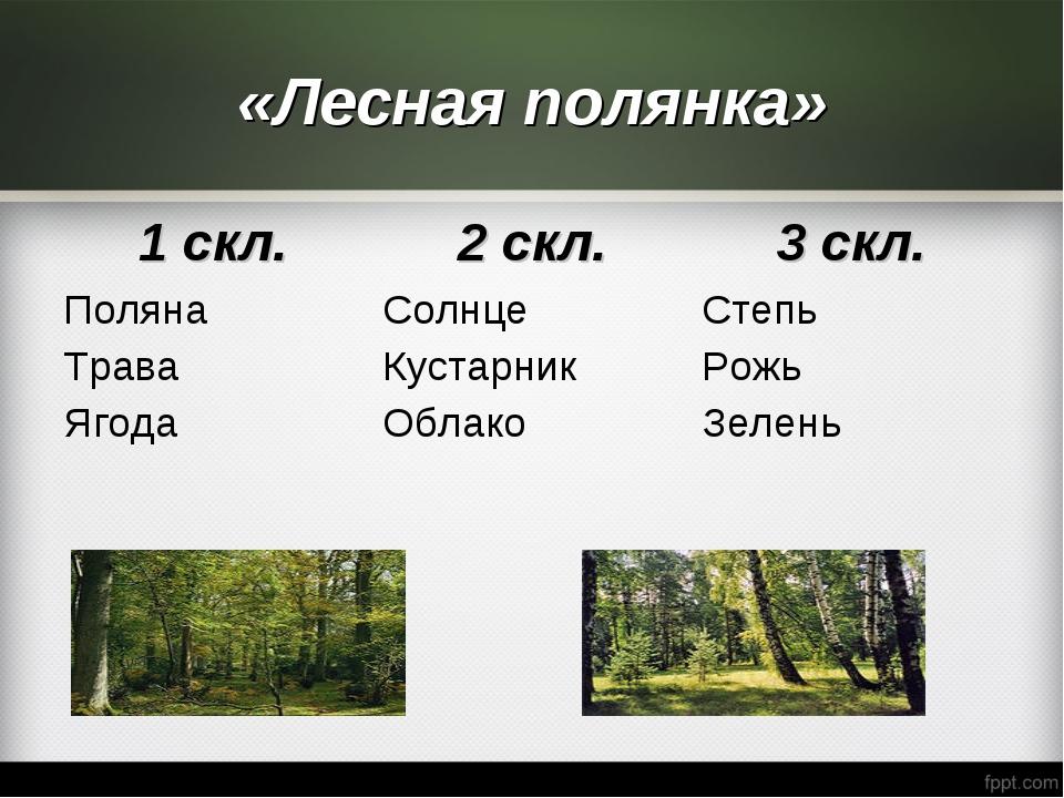 «Лесная полянка»