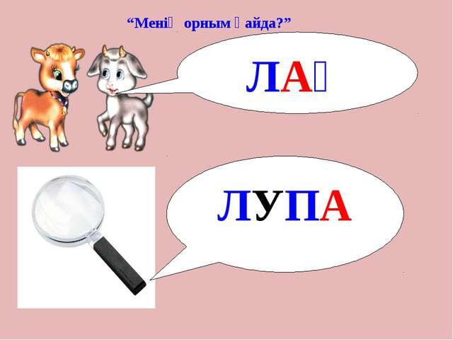 """""""Менің орным қайда?"""" ЛАҚ ЛУПА"""