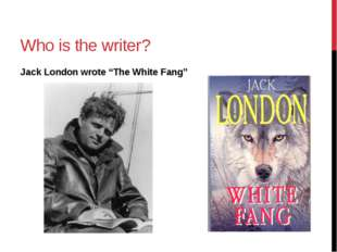 "Who is the writer? Jack London wrote ""The White Fang"""