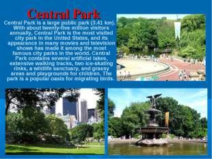 Central Park Central Park is a large public park (3.41 km). With about twenty