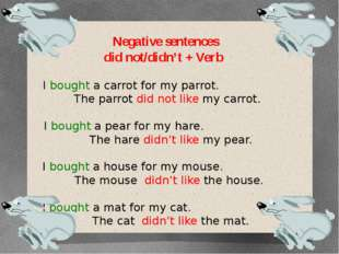 Negative sentences did not/didn't + Verb I bought a carrot for my parrot. The