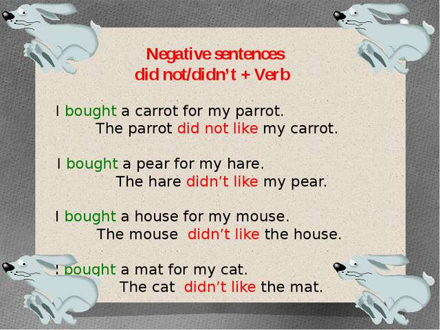 Negative sentences did not/didn't + Verb I bought a carrot for my parrot. The...
