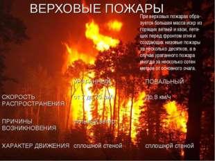 ВЕРХОВЫЕ ПОЖАРЫ При верховых пожарах обра- зуется большая масса искр из горящ