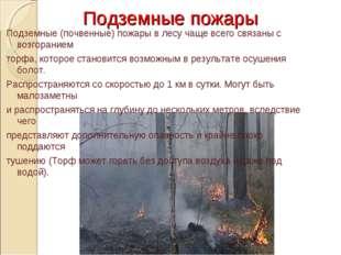 Подземные пожары Подземные (почвенные) пожары в лесу чаще всего связаны с воз