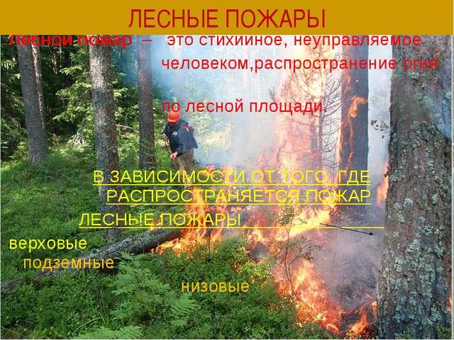 Лесной пожар – это стихийное, неуправляемое человеком,распространение огня по...