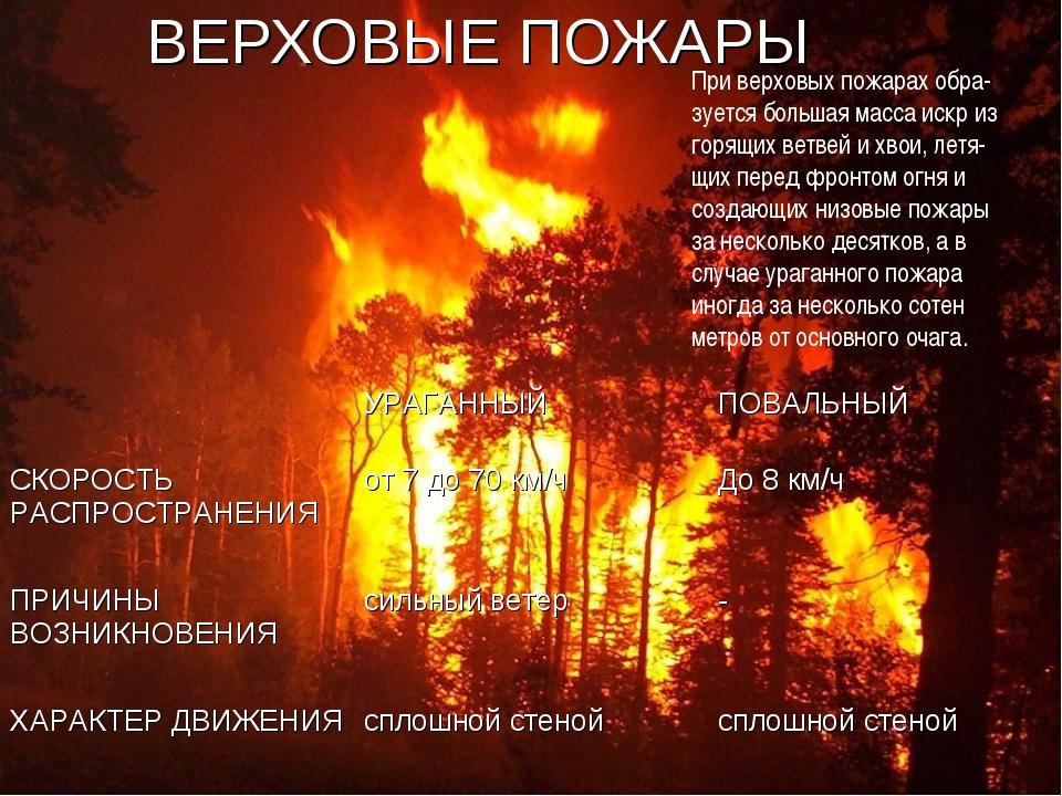 ВЕРХОВЫЕ ПОЖАРЫ При верховых пожарах обра- зуется большая масса искр из горящ...