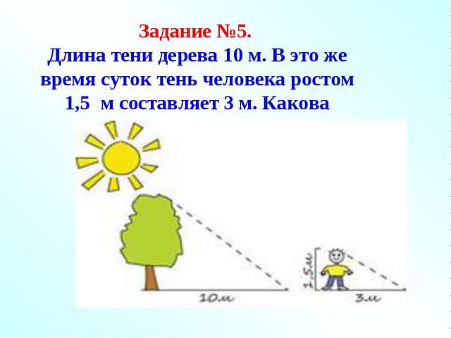 Задание №5. Длина тени дерева 10 м. В это же время суток тень человека ростом...