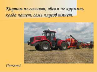 Кнутом не гоняют, овсом не кормят, когда пашет, семь плугов тянет. (Трактор).