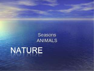 Seasons ANIMALS