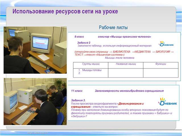 Рабочие листы Использование ресурсов сети на уроке