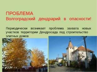 ПРОБЛЕМА Волгоградский дендрарий в опасности! Периодически возникает проблема