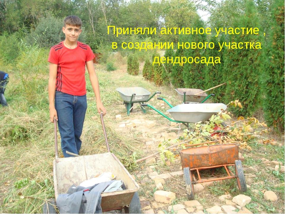 Приняли активное участие , в создании нового участка дендросада