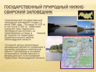 Нижнесвирский государственный природный заповедник создан 11 июня 1980 года