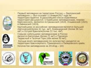Первый заповедник на территорииРоссии—Баргузинский заповедник— был основа