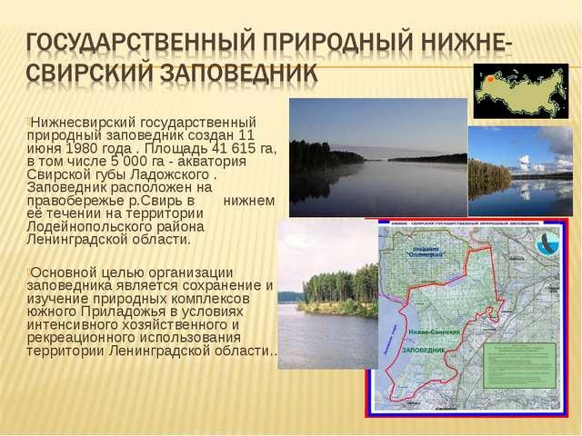 Нижнесвирский государственный природный заповедник создан 11 июня 1980 года...