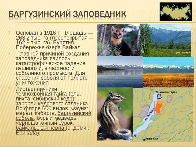 Основан в 1916 г. Площадь — 263,2 тыс. га (лесопокрытая —162,9 тыс. га). Буря...