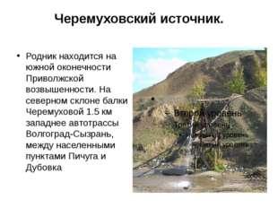 Черемуховский источник. Родник находится на южной оконечности Приволжской воз