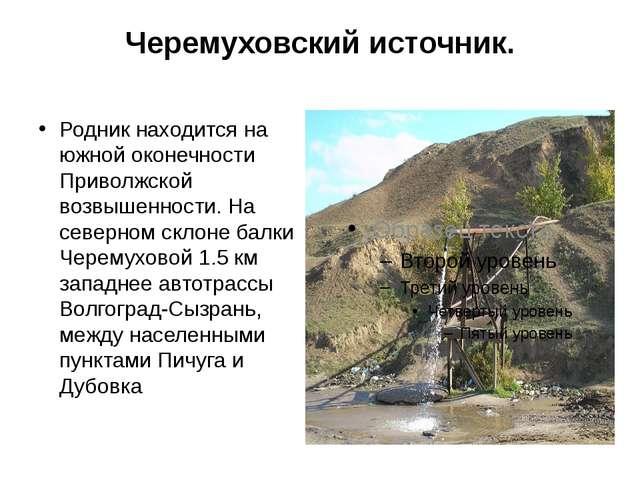 Черемуховский источник. Родник находится на южной оконечности Приволжской воз...