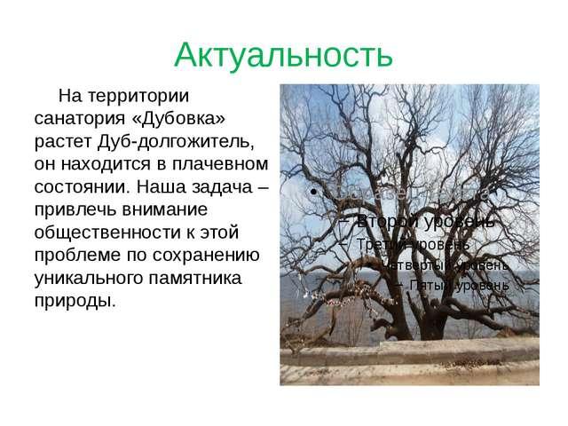 Актуальность На территории санатория «Дубовка» растет Дуб-долгожитель, он на...