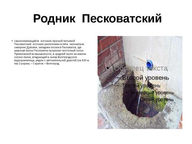 Родник Песковатский самоизливающийся источник пресной питьевой Песковатский...