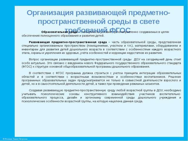 Организация развивающей предметно-пространственной среды в свете требований Ф...