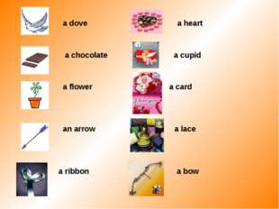 a dove a heart a chocolate a cupid a flower a card an arrow a lace a ribbon