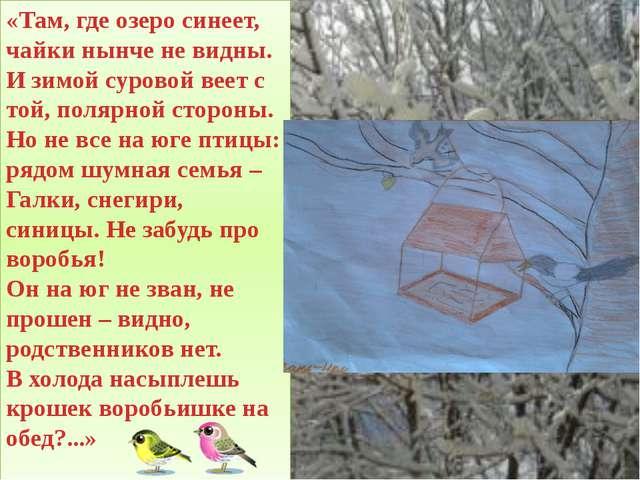 «Там, где озеро синеет, чайки нынче не видны. И зимой суровой веет с той, пол...