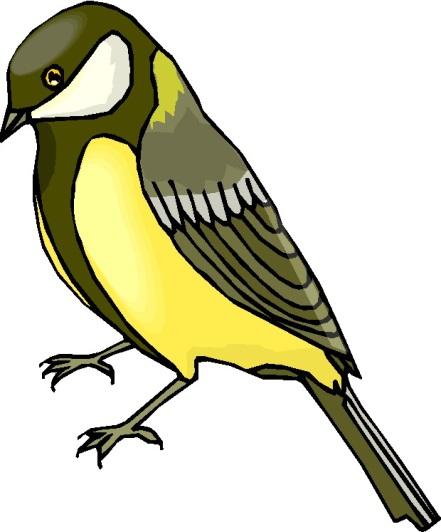 Описание: http://www.clipartgratis.it/foto/animali/uccelli/uccelli_205.jpg