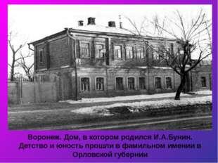 Воронеж. Дом, в котором родился И.А.Бунин. Детство и юность прошли в фамильно
