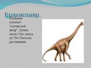 """Брахиозавр. Название означает """"плечистый ящер"""". Длина около 23м, масса до 75т"""