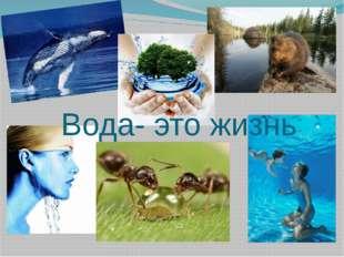 Вода- это жизнь