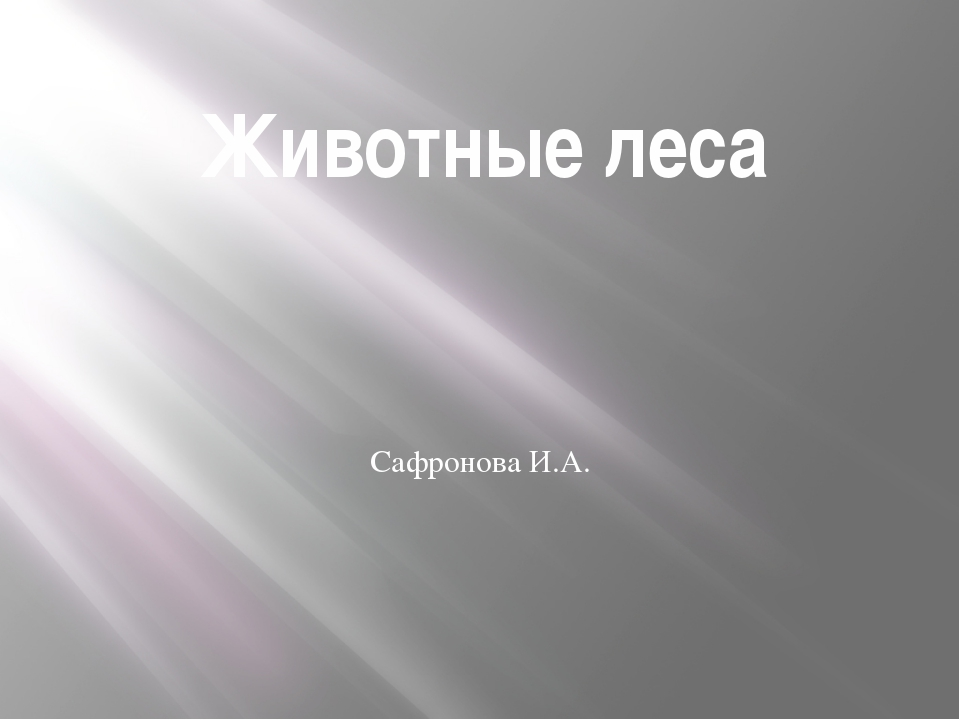 Животные леса Сафронова И.А.