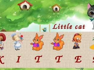 Little cat K I T T E N