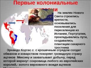 Первые колониальные империи На землях Нового Света строились крепости, основы