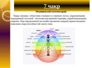 7 чакр Медицинский комментарий. Чакры связаны с областями головного и спинног