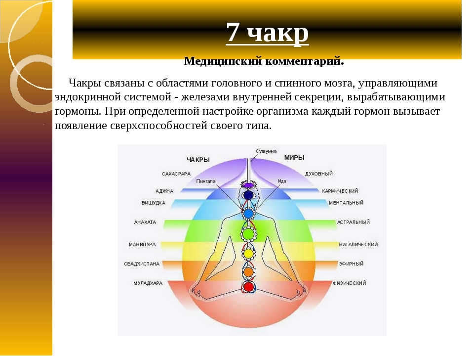 7 чакр Медицинский комментарий. Чакры связаны с областями головного и спинног...