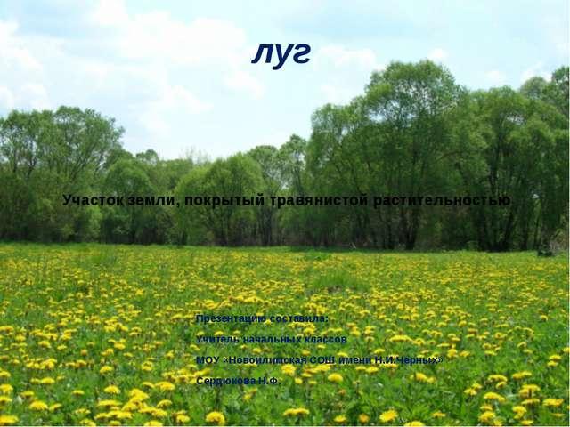 Участок земли, покрытый травянистой растительностью Презентацию составила: Уч...