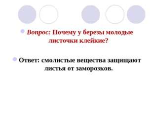 Вопрос: Почему у березы молодые листочки клейкие? Ответ: смолистые вещества з