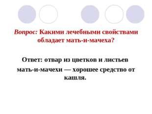 Вопрос: Какими лечебными свойствами обладает мать-и-мачеха? Ответ: отвар из ц