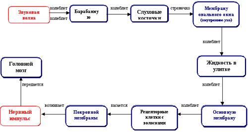 http://festival.1september.ru/articles/594688/img2.gif