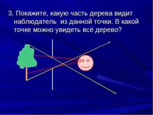 3. Покажите, какую часть дерева видит наблюдатель из данной точки. В какой то