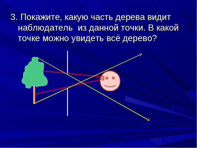 3. Покажите, какую часть дерева видит наблюдатель из данной точки. В какой то...