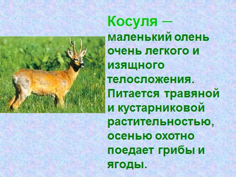 hello_html_6bc31f9f.png