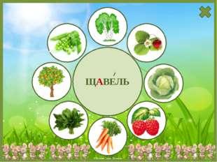 Используемые источники Фон https://img-fotki.yandex.ru/get/9493/134091466.18