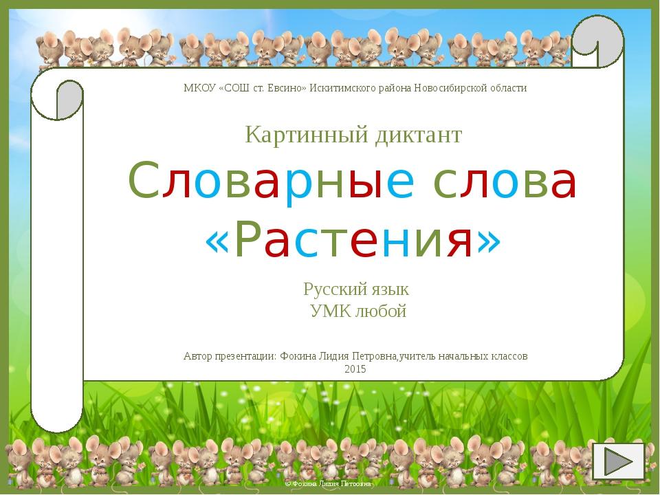 БЕРЁЗА © Фокина Лидия Петровна