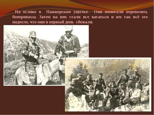 На ослике в Панжерском ущелье. Они помогали перевозить боеприпасы. Затем на...
