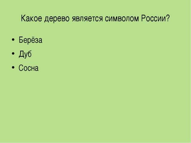 Какое дерево является символом России? Берёза Дуб Сосна