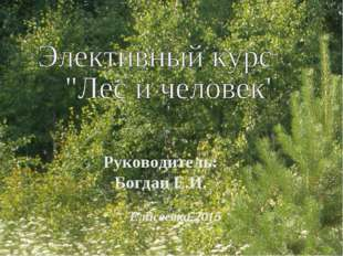 Елисеевка-2015 Руководитель: Богдан Е.И.